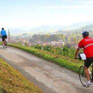 Bicicleta & Caminhada
