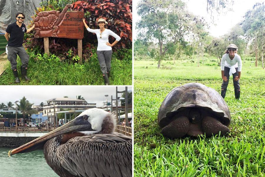 galápagos 7 dia